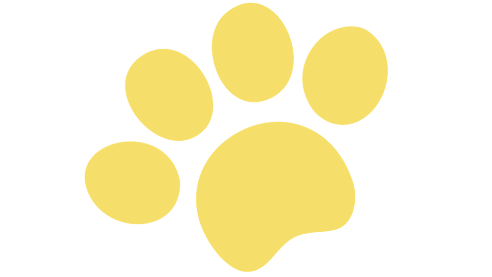 Paw_Yellow (1).png