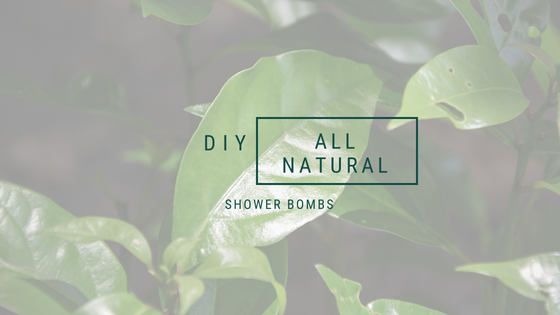 Natural DIY Shower bombs, A life lead simply, www.alifeleadsimply.com, Blog graphic collage ALLS Natural DIY.jpg