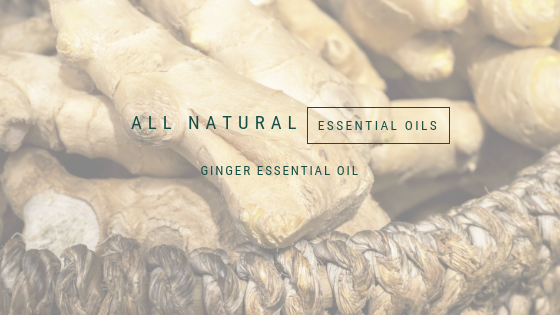 All natural, Ginger essential oil, A life lead simply, www.alifeleadsimply (1).png