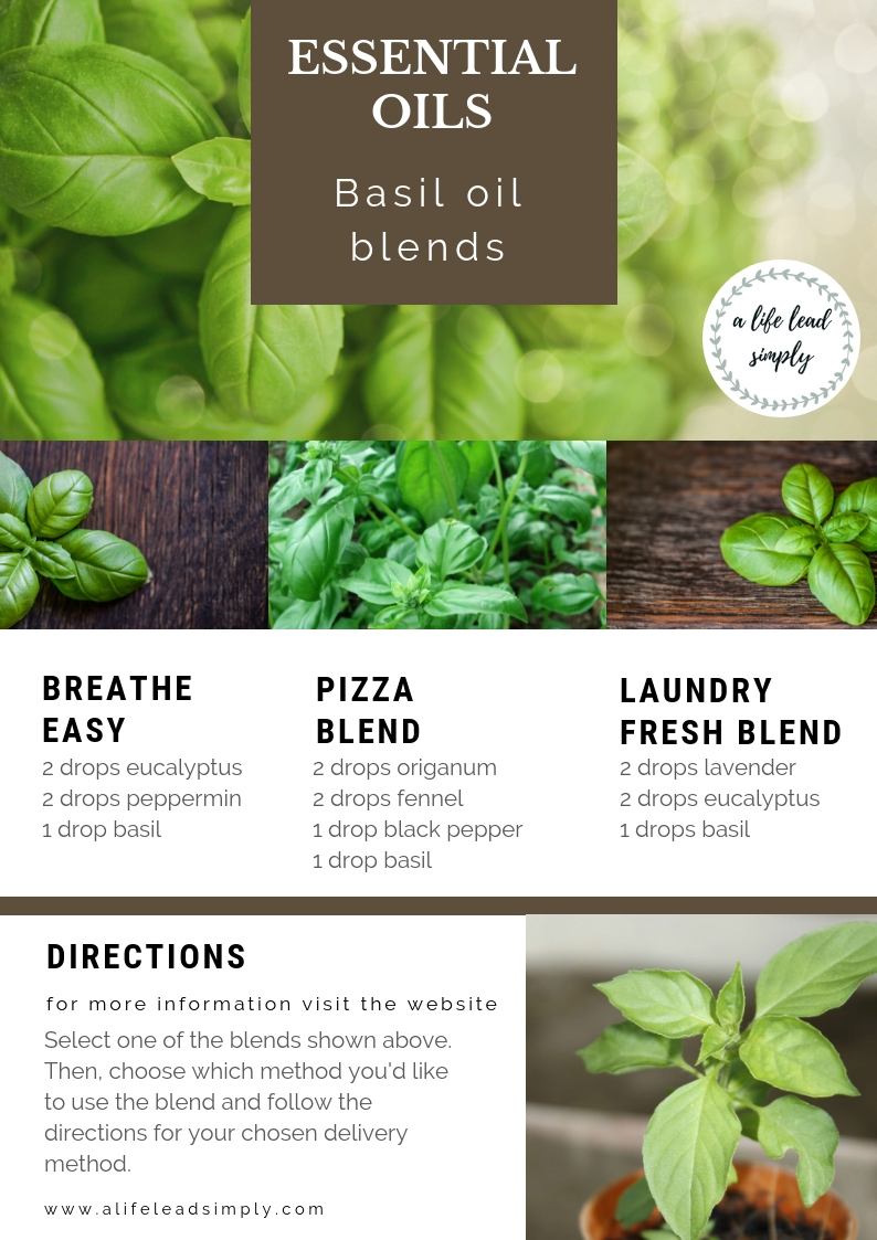 Basil essential oil, a life lead simply, natural health #natural #health #simplify #zerowaste #essentialoils #basilessentialoil #simplehealth #simpleliving #intentional  (4).jpg
