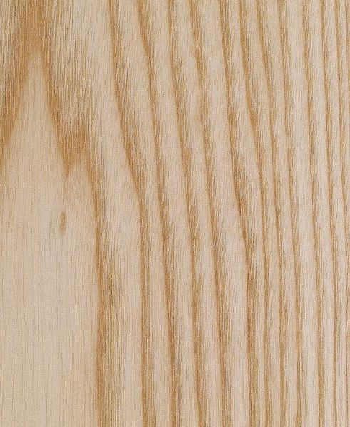Ash- Fraxinus sp - Ash is a light coloured hardwood with a wide straight grain.The wide interesting grain pattern lends itself well to a solid body electric guitars.We like to use it as it's light colour and interesting grain work well with the other woods we use.It has a loud and bright tonal character, with a strong midrange and a crisp bass.