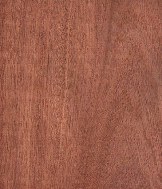 Sapele - Entandrophragma cylindricum - A sustainable African hardwood from the mahogany family that we use instead of the traditional Honduran Mahogany, which is becoming endangered.It ranges in colour from a dark brown to middle brown with a reddish tone and we use it for bodies, necks and in its amazing figured form, for guitar tops.It has a very similar tone to mahogany, with good all round performance, with good bass, treble and a high sustain.