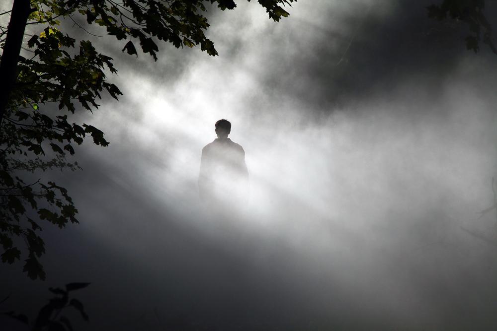 Sandrine Schaefer,  gaggle (in fog),  photo by Daniel S. DeLuca (2018)