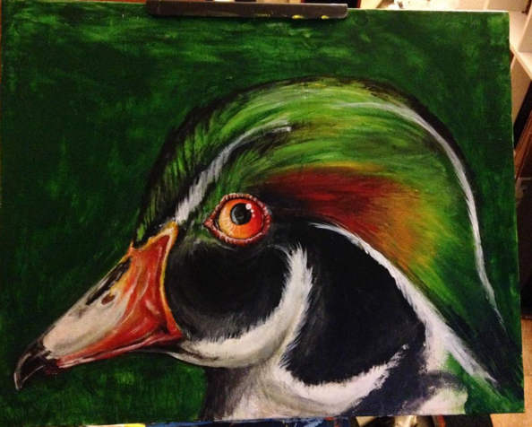 wood duck.png