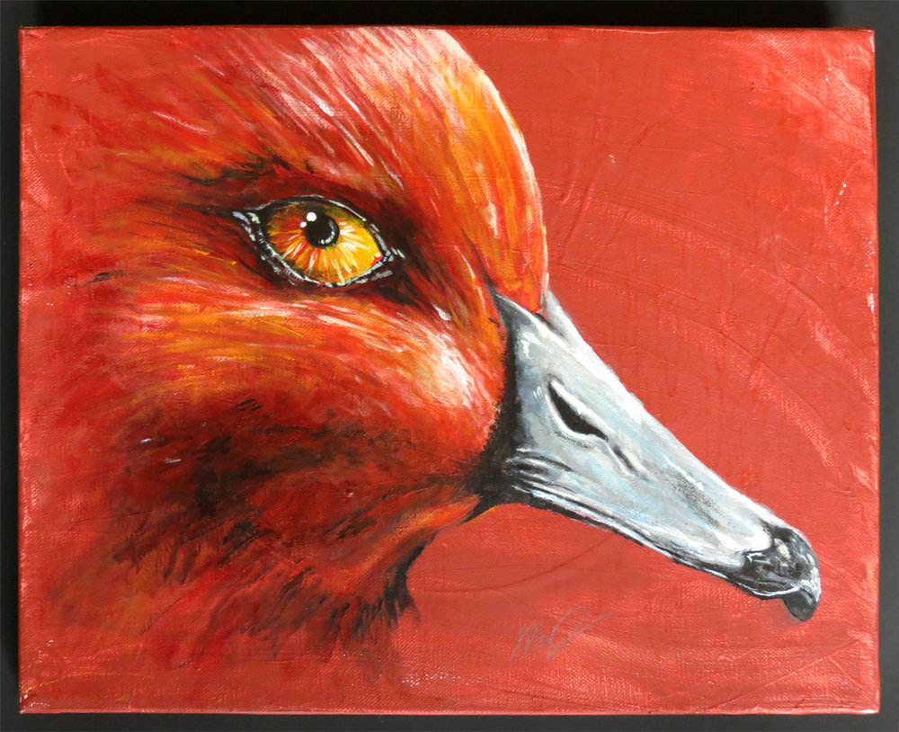 Red Headed Duck $80