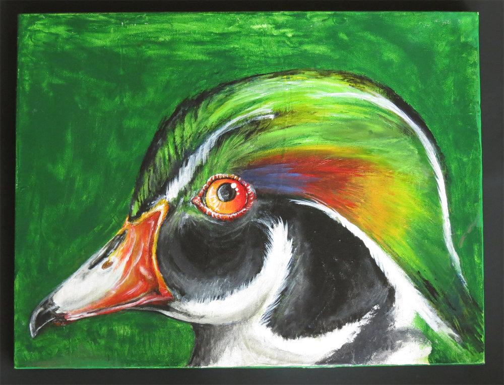 Wood Duck $180