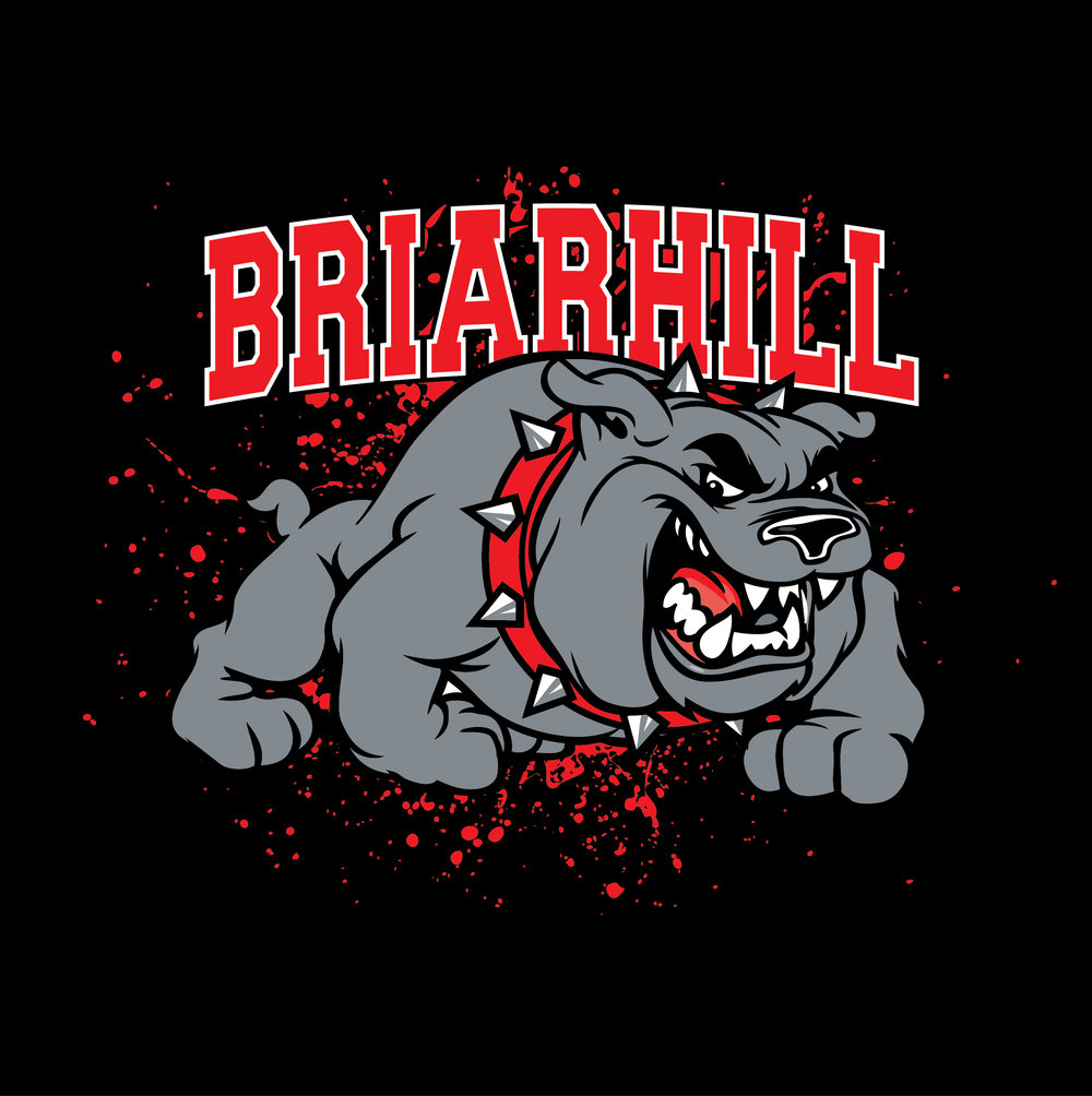 Briarhill Image.jpg