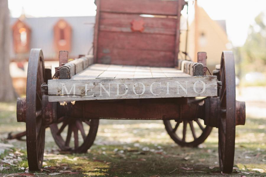 mendocino-destination-wedding-photographer-14.jpg