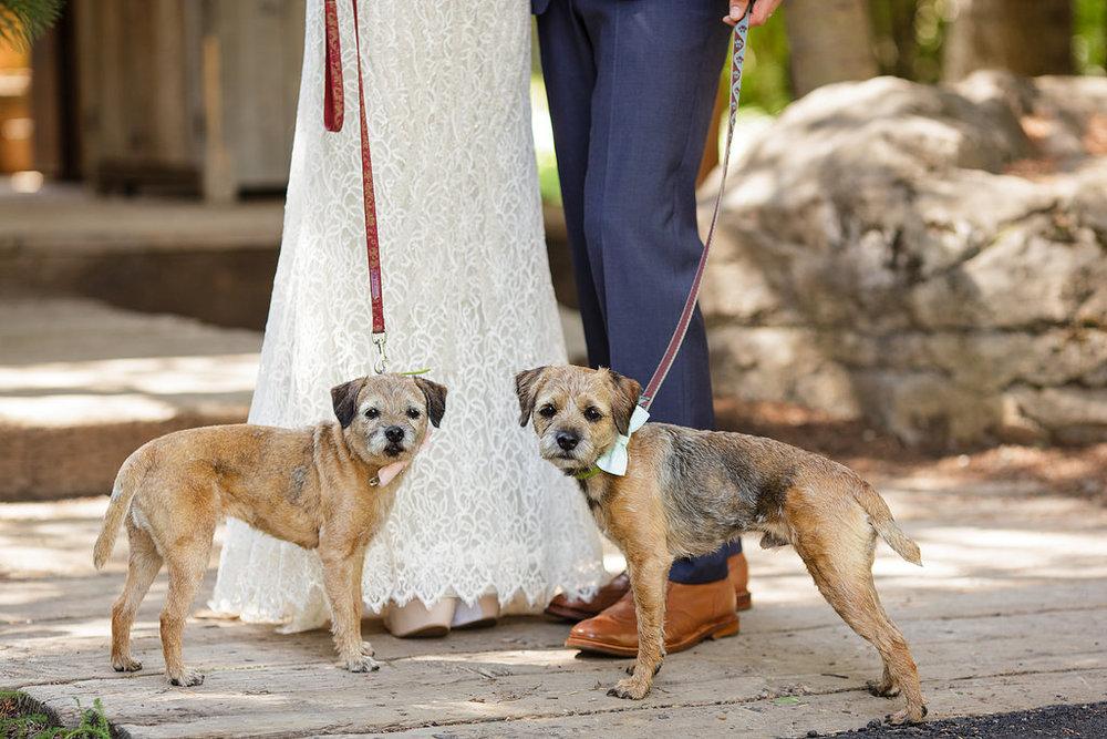 sundance-wedding-photographer-8.jpg