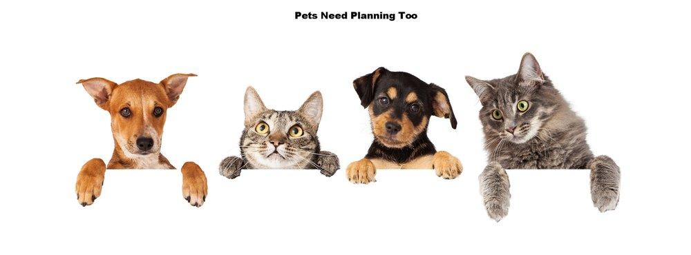 Don't forget to plan for your pets you leave behind.