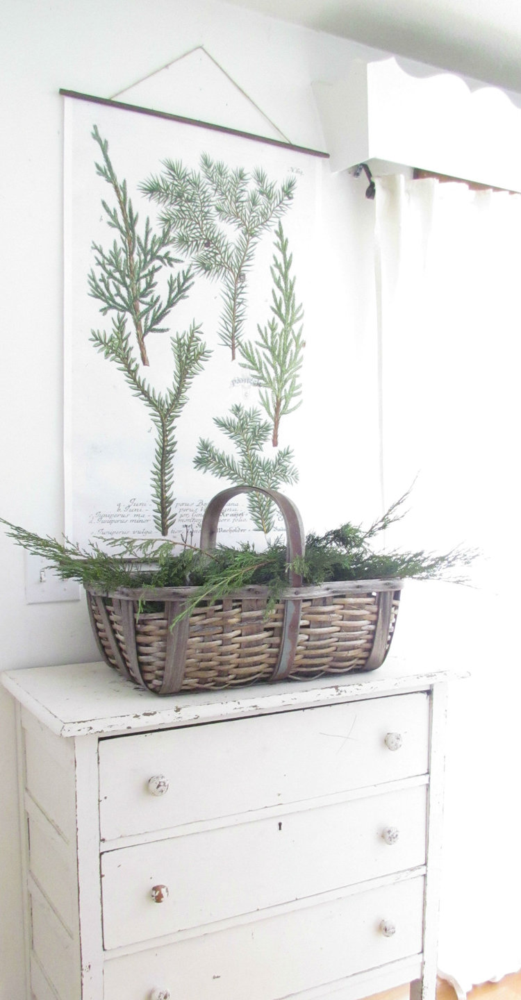 DIY Hanging Juniper Botanical Print5.jpg