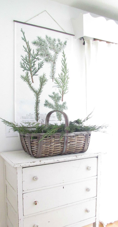 DIY Hanging Juniper Botanical Print5.jpg
