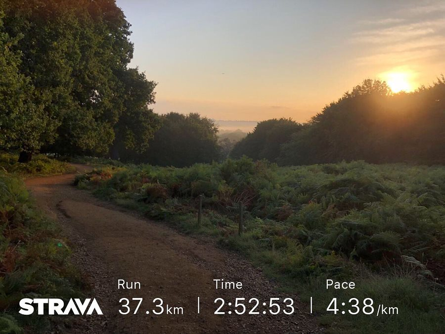 There are some benefits to getting up at 5am to go for a 37k run in Richmond Park before work - Amazing sunrises on the trails are one of them
