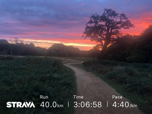 Sunrise in Richmond Park on 40k run for JamesRunsFarcom.jpg