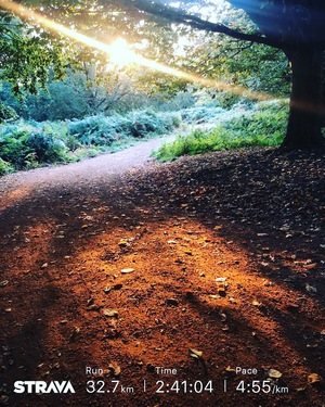 Sunrise through Trees on 32k run in Richmond Park for JamesRunsFarcom.jpg