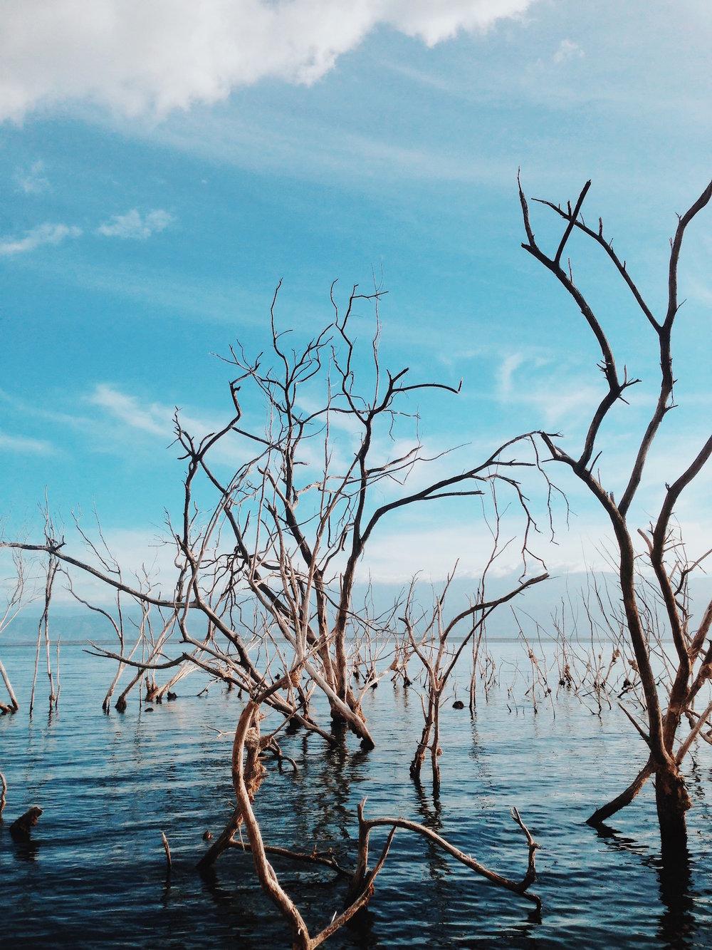 El Lago Enriquillo - Bahoruco e Independencia, República Dominicana