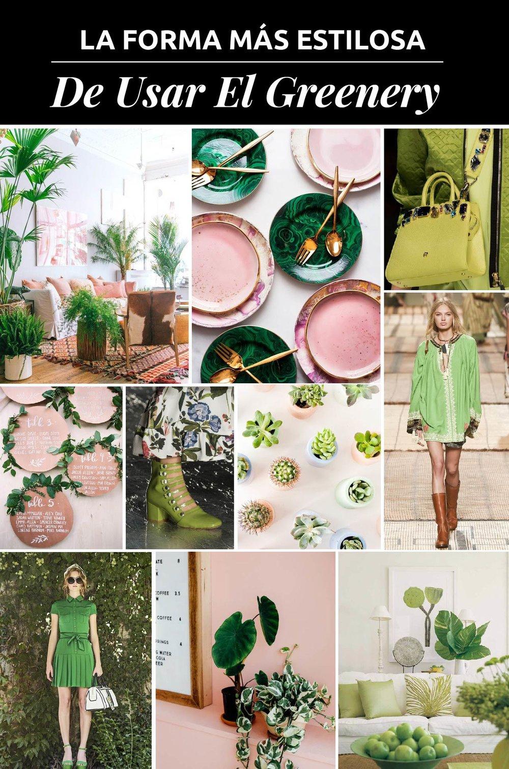 Greenery es el color del 2017. Es una tono refrescantes que simboliza nuevos inicios. ¿Quieres saber como usarlo? ¡Descubre mi combo favorito!