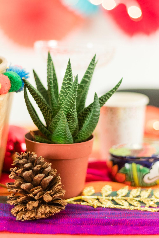 Decor tip! - Combina los cactus y suculentas con piñas de navidad. Puedes pintarlas con pintura de aerosol dorado para darle más brillo