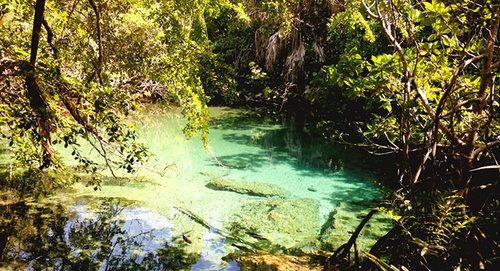 Viajando Al Parque  'Ojos Indígenas', Punta Cana
