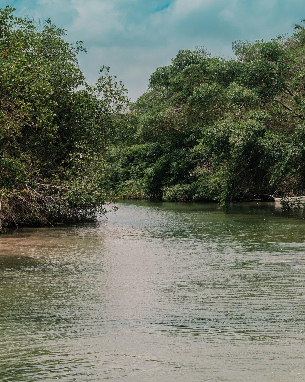 Arroyo Salado | Esta es nuestra guía completa de viaje a Cabrera y la Laguna Dudú; desde dónde ir, cómo llegar, y presupuesto. Definitivamente, la  República Dominicana lo tiene todo, lo comprobé en este viaje.