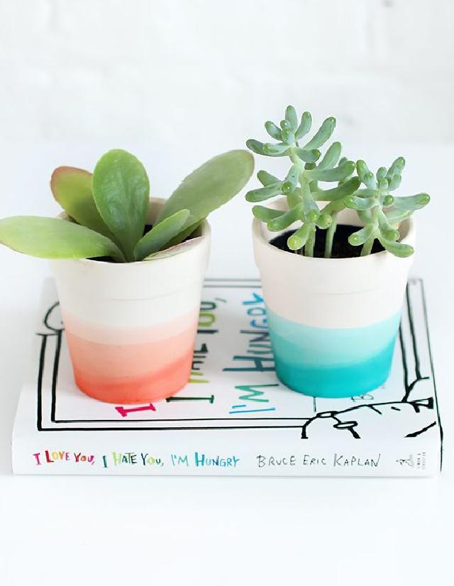 Tarrón de plantas suculentas teñido - ¿Soy yo, o las plantas de suculentas están como en tendencia? Regala algunas pero encargarte de teñir el jarrón o macetero para que luzcan mas encantadoras. Estoy segura que serán las reinas del jardín.VER TUTORIAL