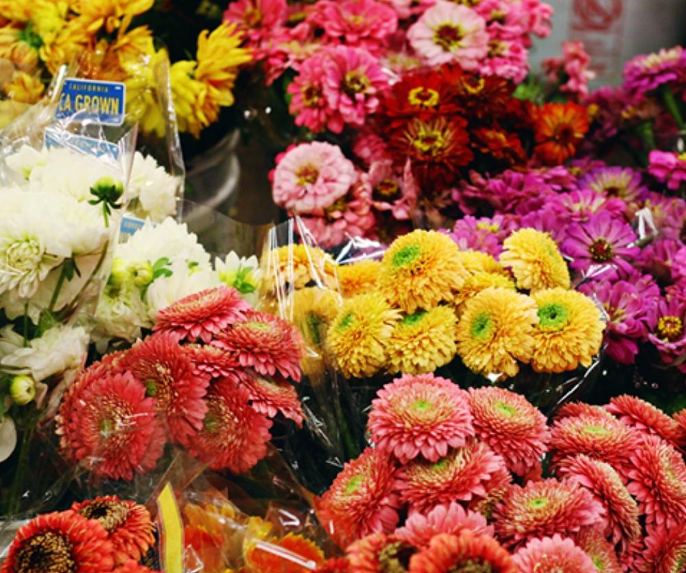 San Francisco Flower Market - Unos de los lugares que me encantó y no conocía, era el mercado de flores. Aquí encontrarás cientos de puestos de vendedores con hermosas flores y plantas de todo tipo. Habían flores que en mi vida había visto. La mayoría de los vendedores son mexicanos, por lo que me fue súper fácil comunicarme con ellos en español. Establecí una conversación con unos de ellos y quedó tan sorprendido de que yo había venido de tan lejos a conocer el mercado que decidió regalarme las flores. Hay que admitir que los dominicanos caemos en gracia.