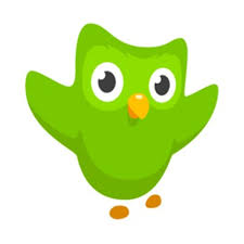 Duolingo   Practice your foreign language skills on this fun, free site.