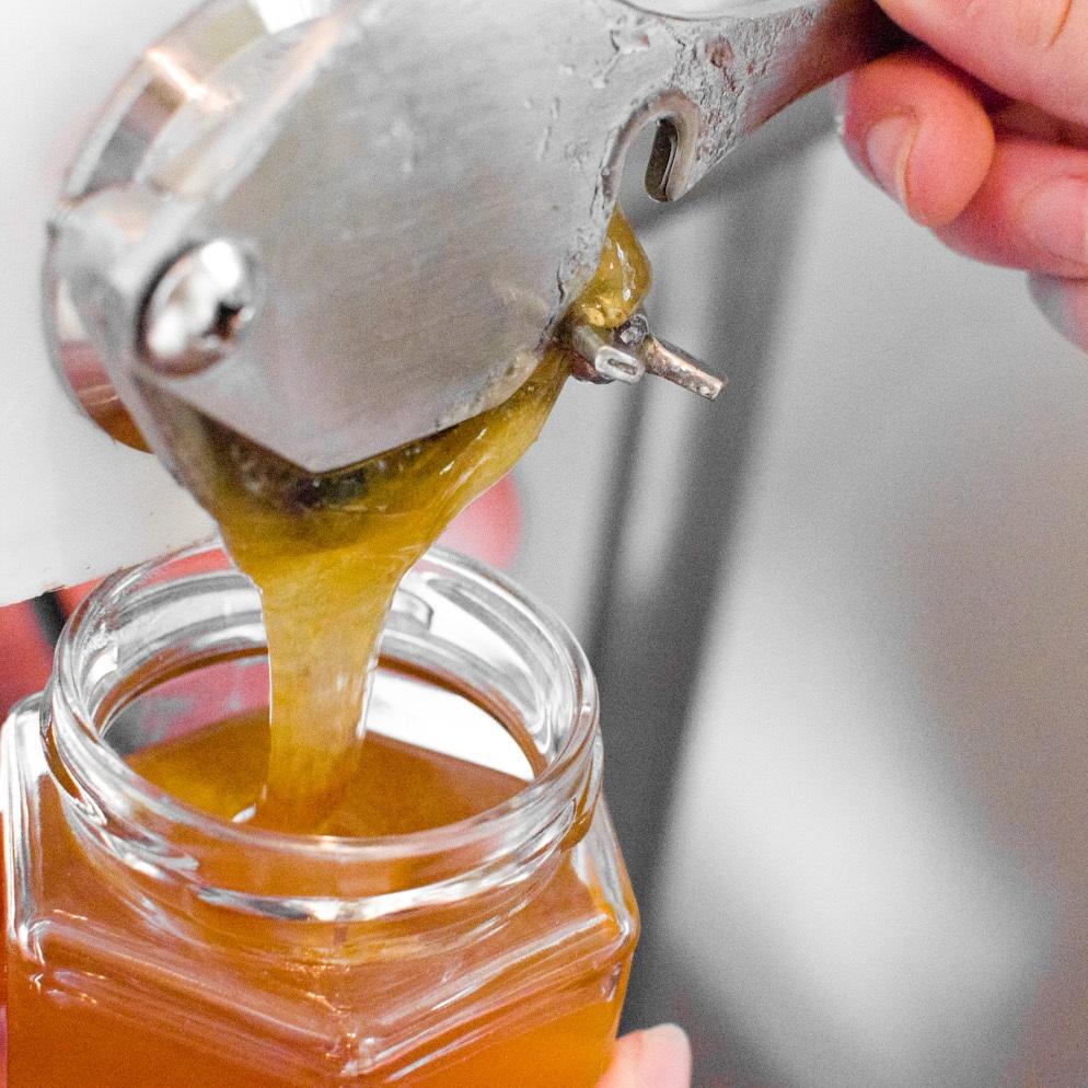 honey+bottling.jpg