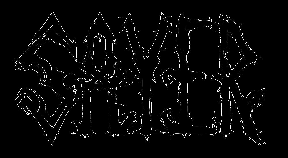 Sayer - Logo Black.png
