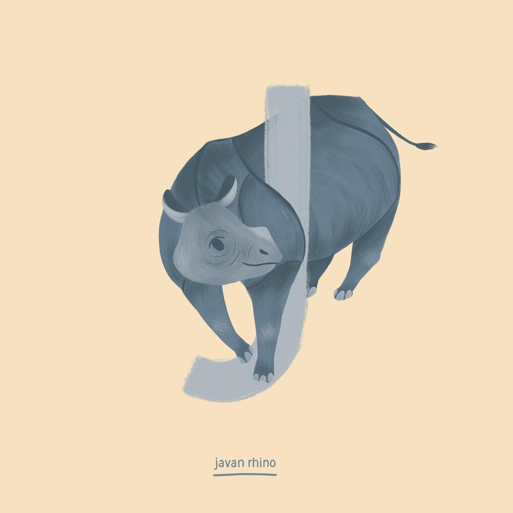 Javan Rhino.png