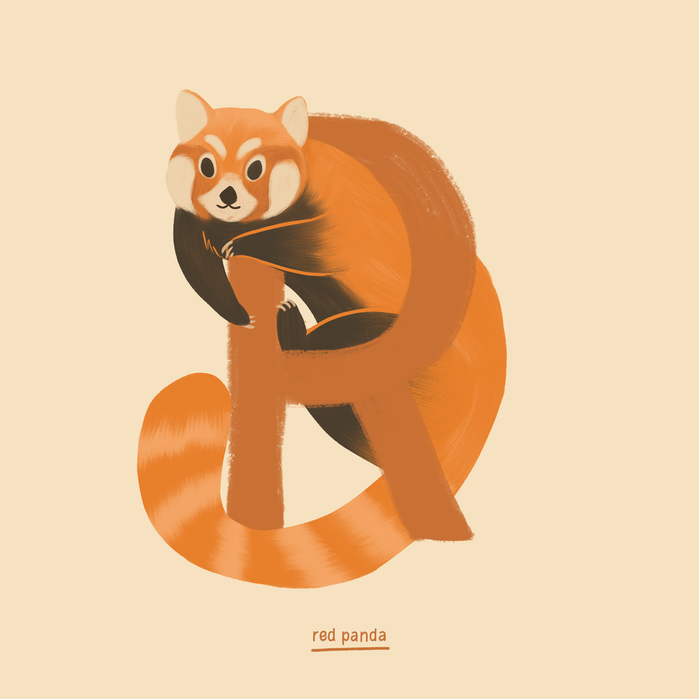 Red Panda.png