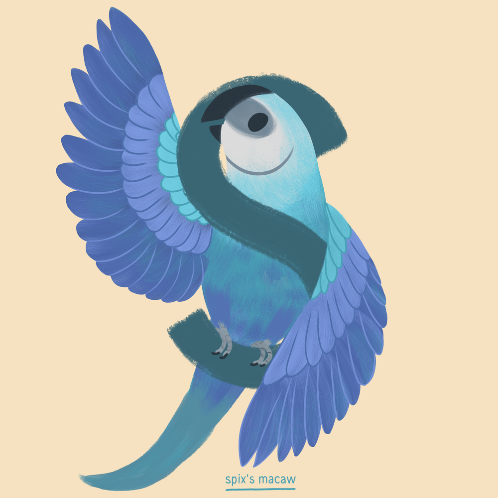 Spixs Macaw.png
