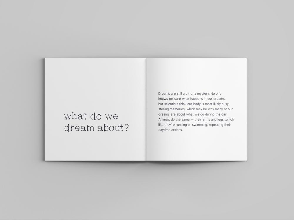 5 what dream.jpg
