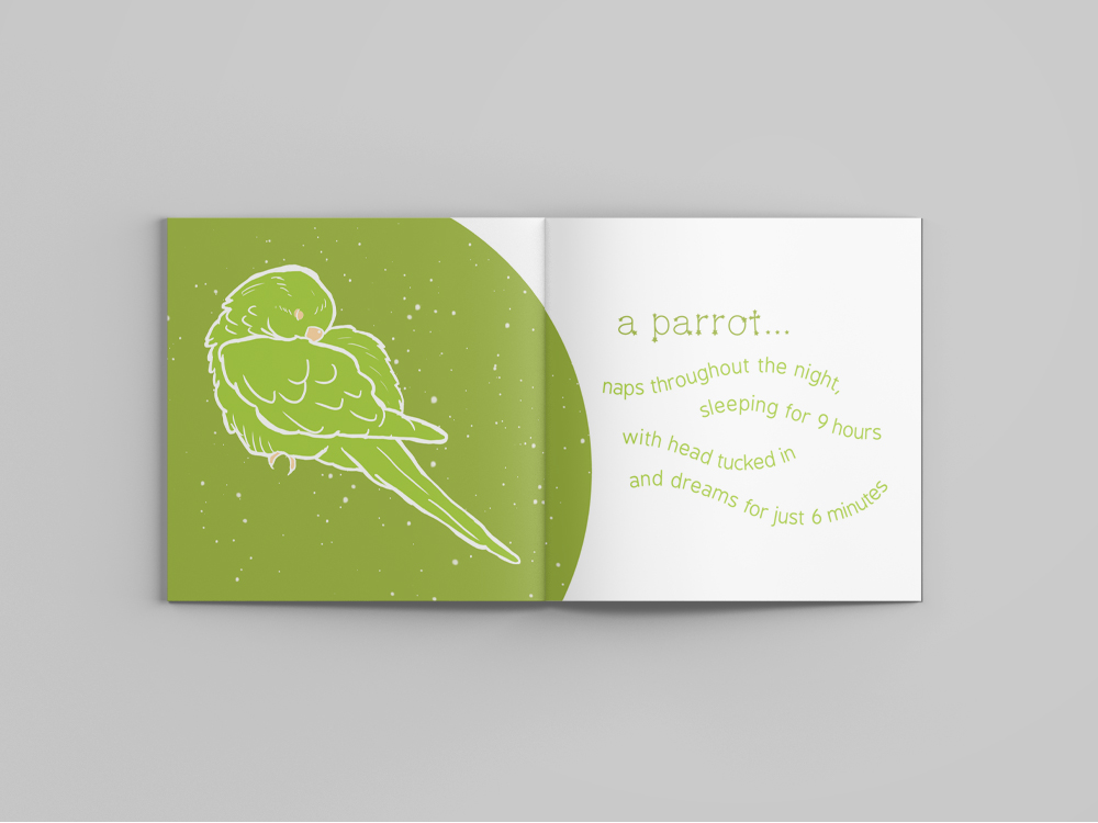 15 parrot.jpg