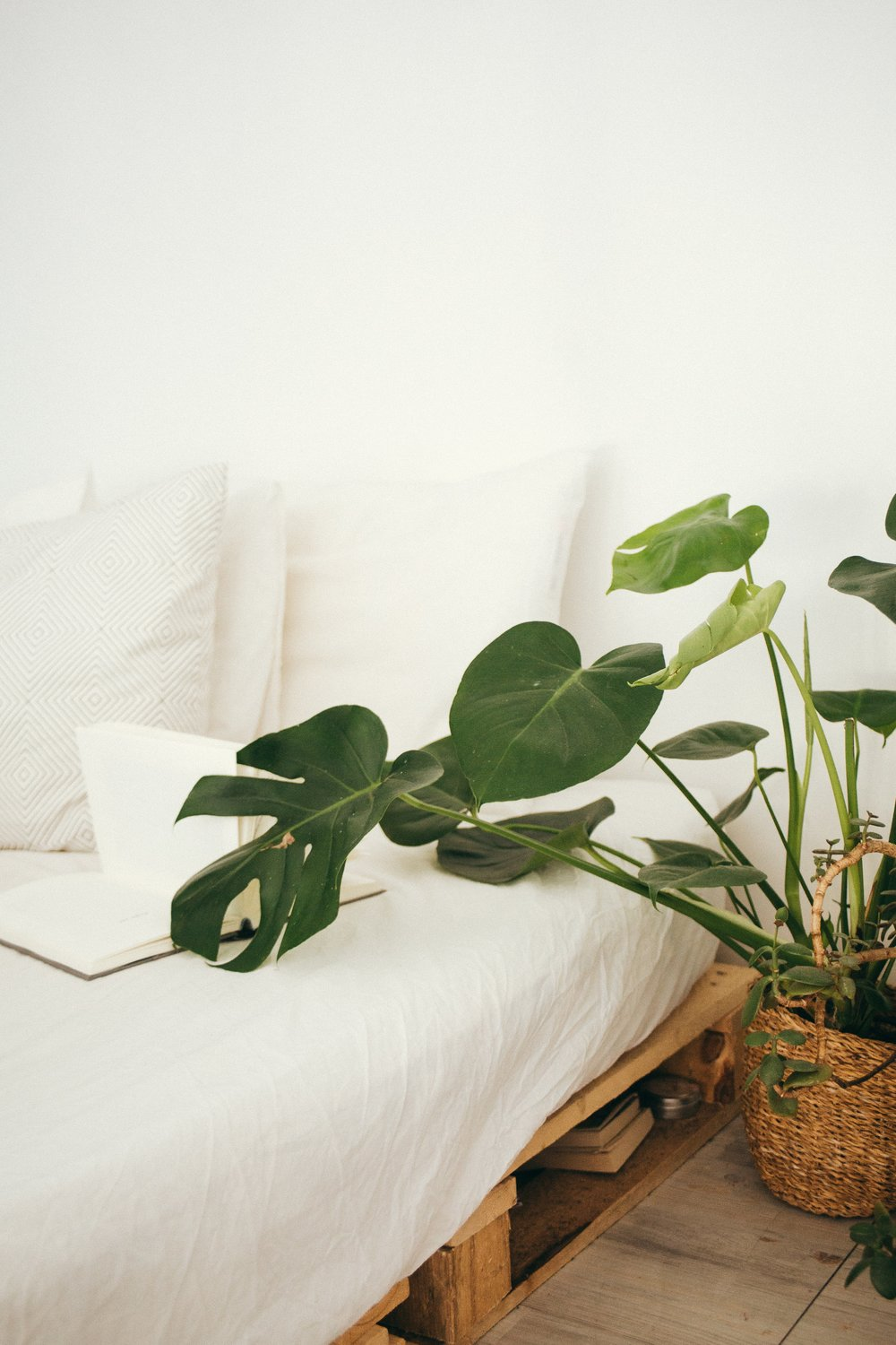 2 QUESTIONS TO MINIMALISM - This Wild Home