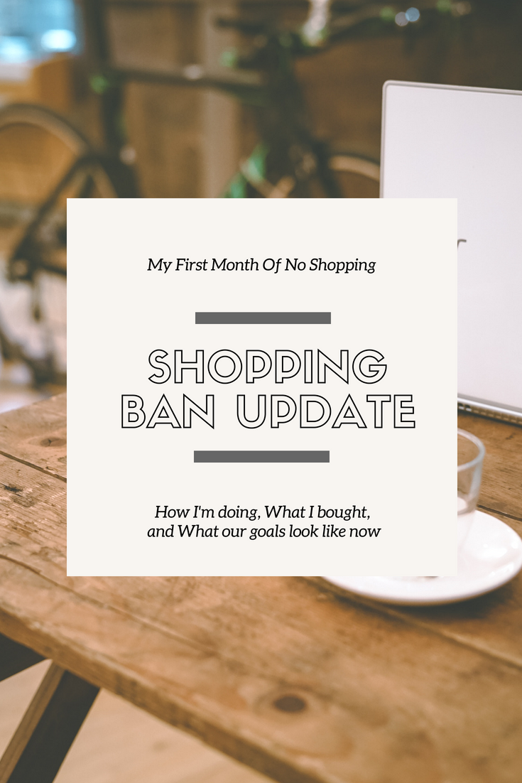 SHOPPING BAN UPDATE // 6.18.18 - This Wild Home