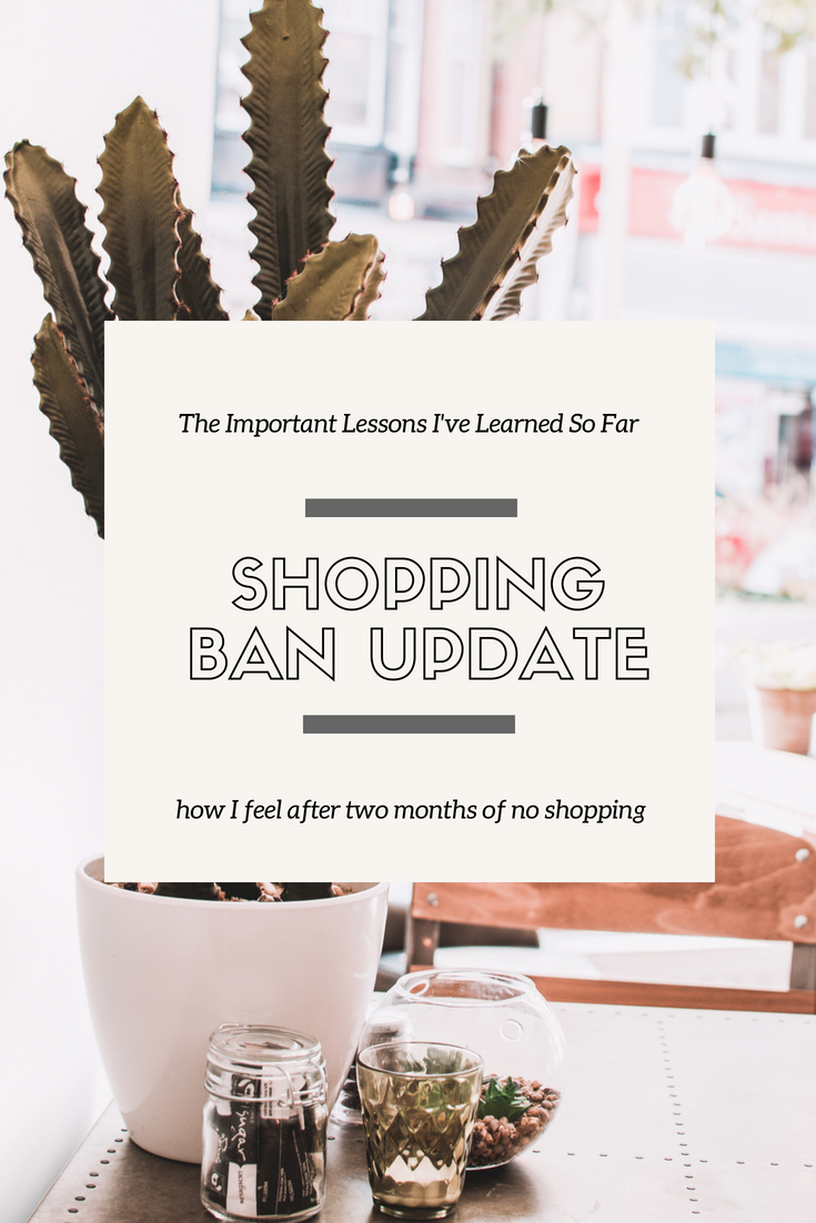 SHOPPING BAN UPDATE // 7.25.18 - This Wild Home