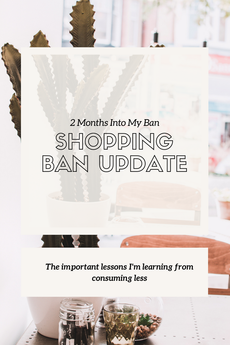 Important lessons from my shopping ban.png