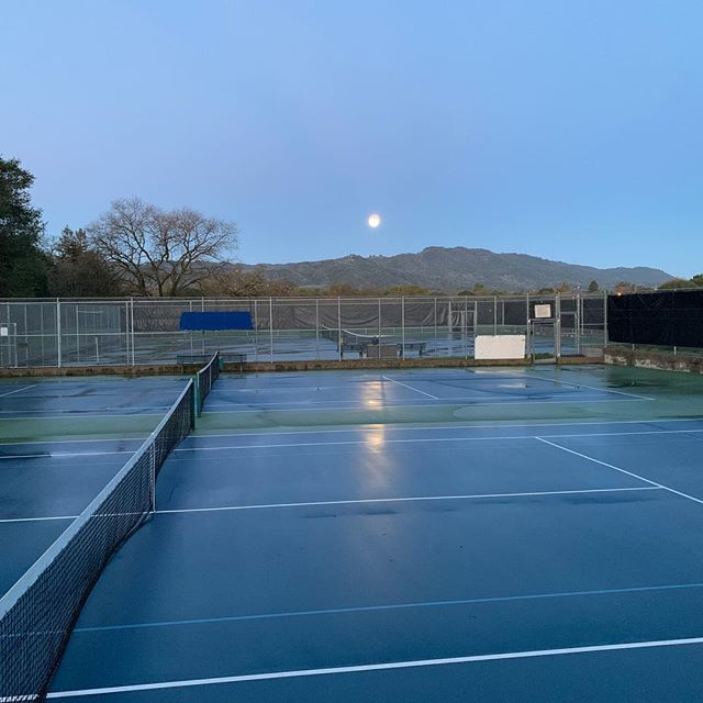 Courts are now dry and the forecast looks good for tennis.