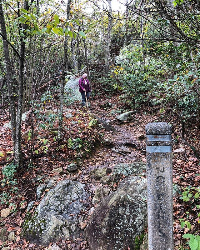 How are you enjoying the outdoors in Autumn? @shenandoahnps is one of our favorite spots to hike and take advantage of the weather! . . . Outdoor Muslims is a community of Muslims and allies in the greater Washington DC area who enjoy exploring, learning, and reconnecting with the outdoors together. We believe in promoting diversity and stewardship in the outdoors and that includes celebrating all the varied ways people experience nature. This community is a safe space for learning outdoor skills, fostering fellowship, and finding new ways to connect with the outdoors. Join us and share your stories using #OutdoorMuslims. . #findyourpark #diversifyoutdoors #optoutside #unlikelyhiker #thegreatoutdoors #theadventuregap #alltrails #diversity #brownpeoplecamping #representationmatters #hiking
