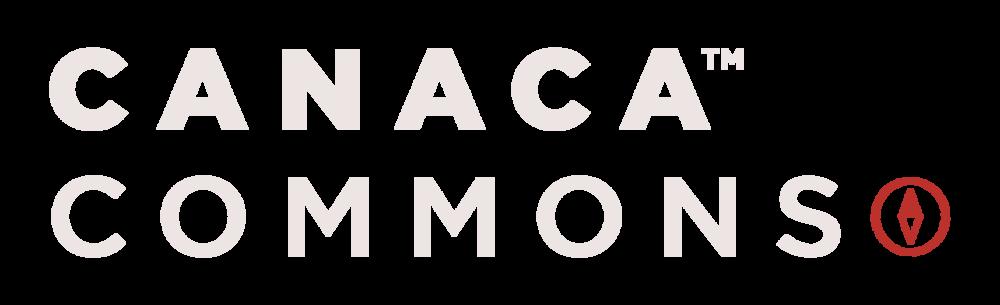 CC-Commons-Logo-Exploration-V02-03-(1).png