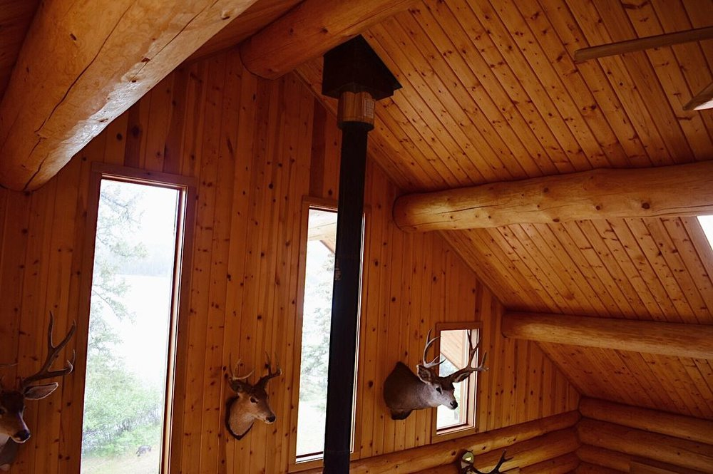 cabin 3.jpg
