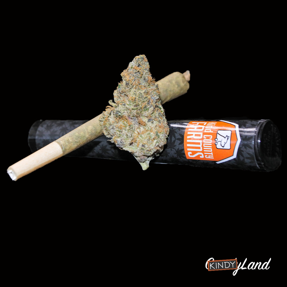 Kind County Farms - KindyLand PreRolls.jpg
