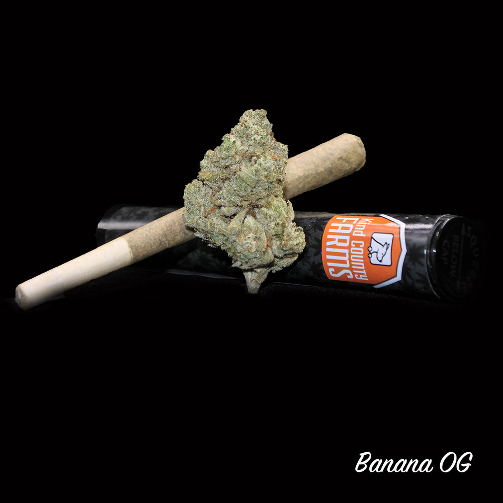 Kind County Farms - Banana OG Pre Rolls.jpg