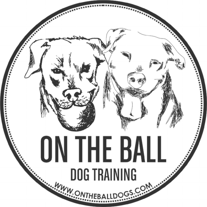 On the Ball Dog Training