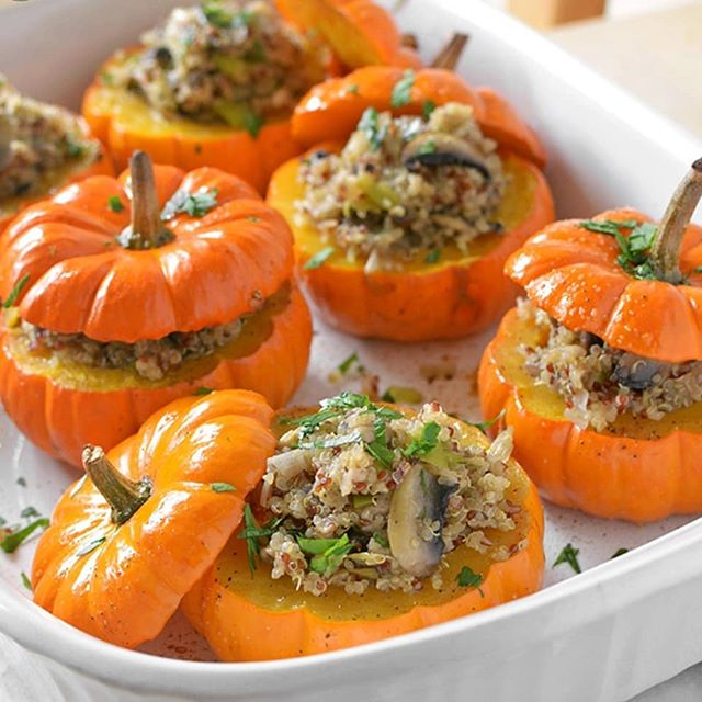 Happy Halloween!! Hope everyone has a fun day 🍄❤ If you're looking for some Halloweeny recipes, try out this stuffed pumpkin recipe with quinoa, veggies, and mushrooms! Stay spooky! 👻👽☠🎃 #halloweenrecipes #halloweenfood #halloweenfoodideas #colorado #northerncolorado #fortcollins #mushrooms #mycology #fungi #superfood #vegan #healthfood #coloradofood #coloradolocal #bouldercolorado #boulder #longmontcolorado #longmont #mushroomrecipes #coloradofoodie #foodie