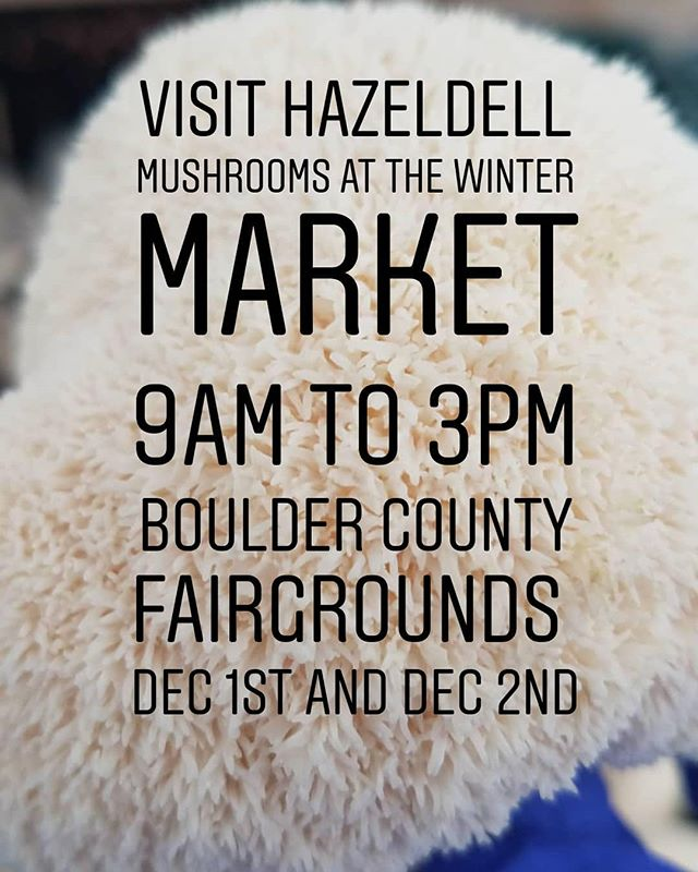 Stock up on mushrooms at the indoor winter market today and tomorrow!  #boulder #longmontcolorado #longmont #northerncolorado #fortcollins #milehighcity #foodie #bouldercolorado #bouldercounty #colorado #coloradofoodie #gourmetmushrooms #lionsmanemushroom #lionsmane #studyfood #cuboulder #csurams #coloradostate #coloradolocal #windsorcolorado