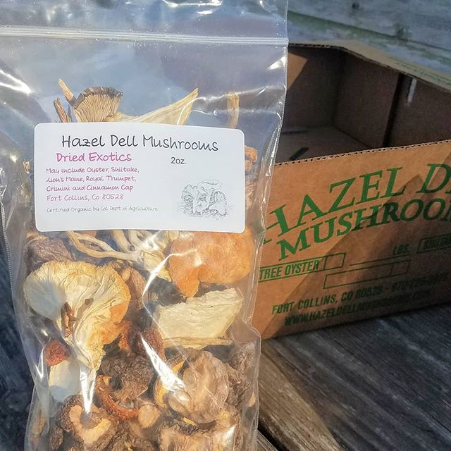 We now officially sell dried mushrooms, mushroom powder, and mushroom rubs on our website! Visit our website to purchase your favorite organic mushroom products and find information/recipes on each product! #mushrooms #farmersmarket #bouldercolorado #bouldervegan #vegan #healthfood #coloradofood #coloradolocal #superfood #coloradofoodie #gourmetmushrooms #colorado #northerncolorado #fortcollins #milehighcity #denver #mushroomgrowing #organic #veganrecipes #vegetarianfood #veganprotein #windsorcolorado #longmont #longmontcolorado