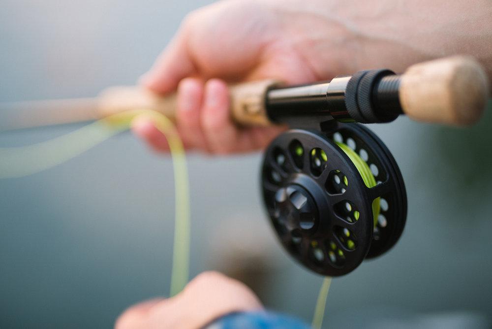 stock-fishing.jpg