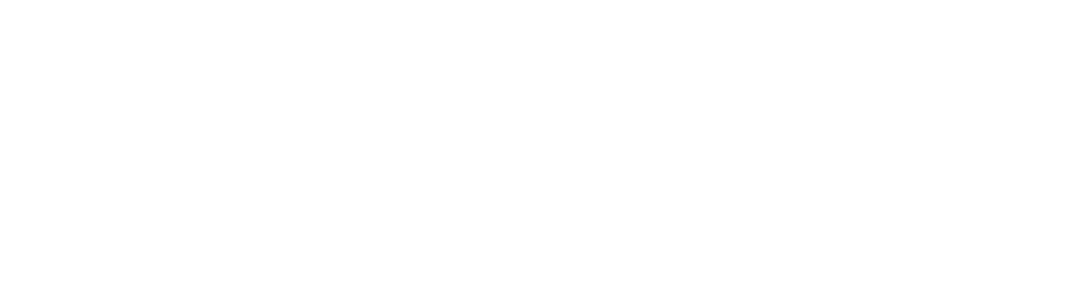 Lisa Ring For Congress
